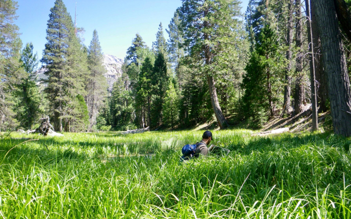 Sequoia's Principal, Tashi, performing transect surveys along the Mokelumne River to monitor effects of long-term river flow regimes on plants and wildlife along the river.