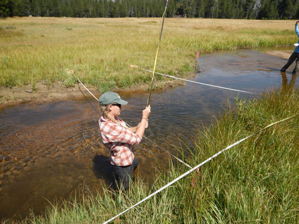 Staff Biologist Ashley Brown setting up transects along Meadow Lakes in the Sierras during the Mokelumne Riparian Monitoring project.