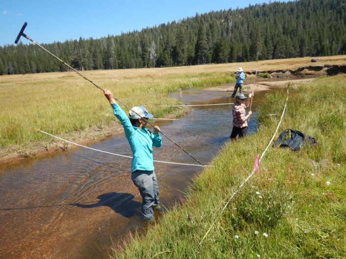 Staff biologist Liz Lopez setting up transects along Meadow Lakes in the Sierras during the Mokelumne Riparian Monitoring project.
