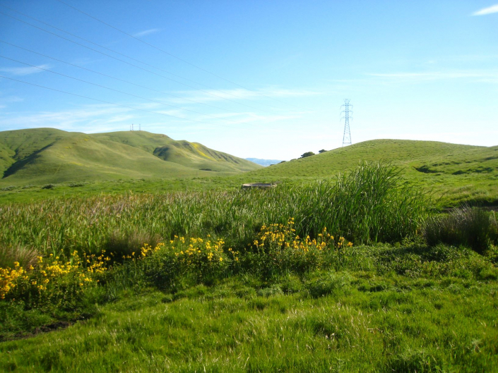 A beautiful spring day collecting data along a PG&E transmission line in south San Jose.