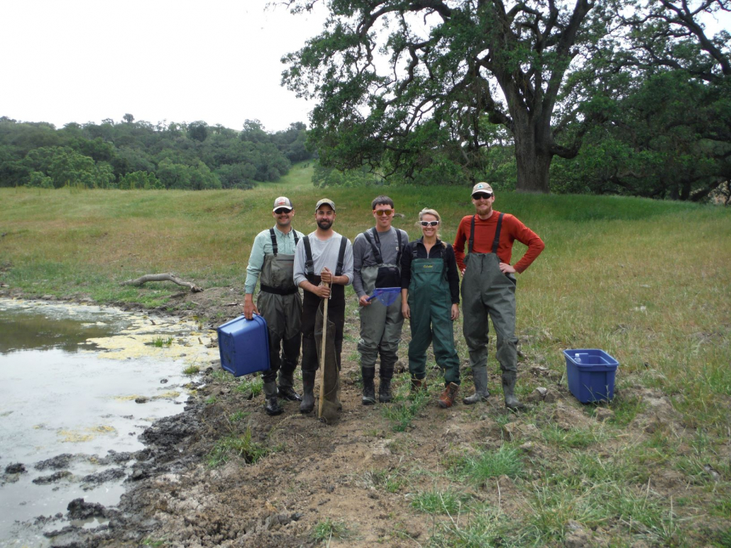 Sequoia's Principals, Debie Montana, Tashi MacMillen, Brett Hanshew, and staff biologists on a conservation easement in the early days of Sequoia.